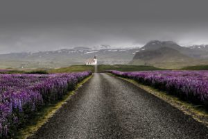 Iceland culture and history